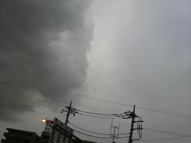 また雨(;_;)